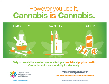 However You Use It, Cannabis is Cannabis [infographic]