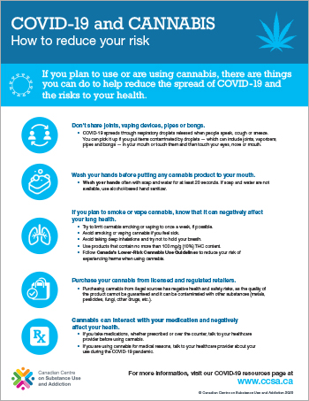 COVID-19 and Cannabis: How to Reduce Your Risk [infographic]