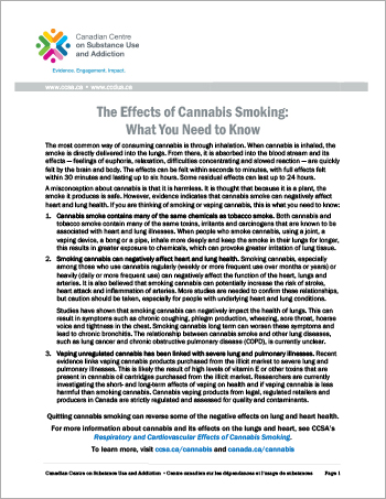 The Effects of Cannabis Smoking: What You Need to Know [report in short]