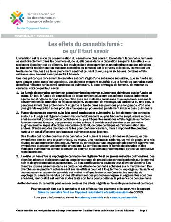 Les effets du cannabis fumé : ce qu'il faut savoir [rapport en bref]